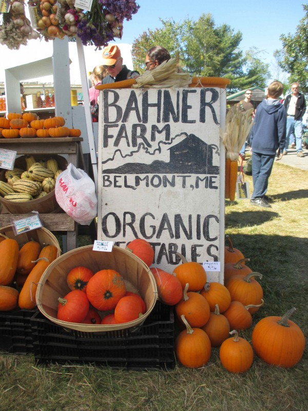 Bahner Pumpkins