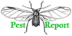 Get the Pest Report